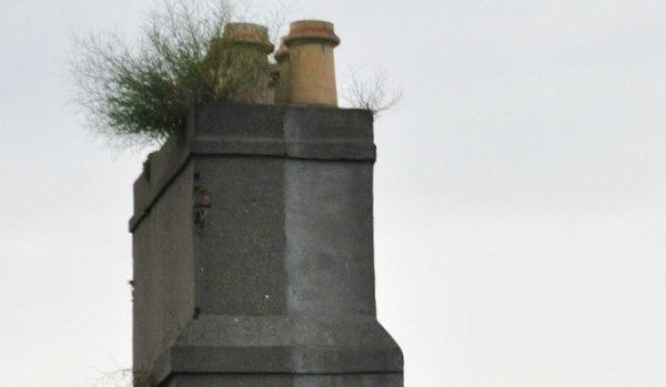Feiing og tilsyn av hytter i Storlidalen i 2019
